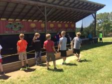 Ball Zone - Basketball, baseball, football, and soccer!