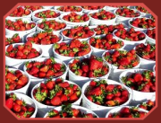Strawberries are full of nutrition!
