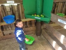 Lil' Orchard in Lil' Farmersville