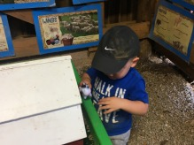 Lil' Farmers Play Table in Lil' Farmersville
